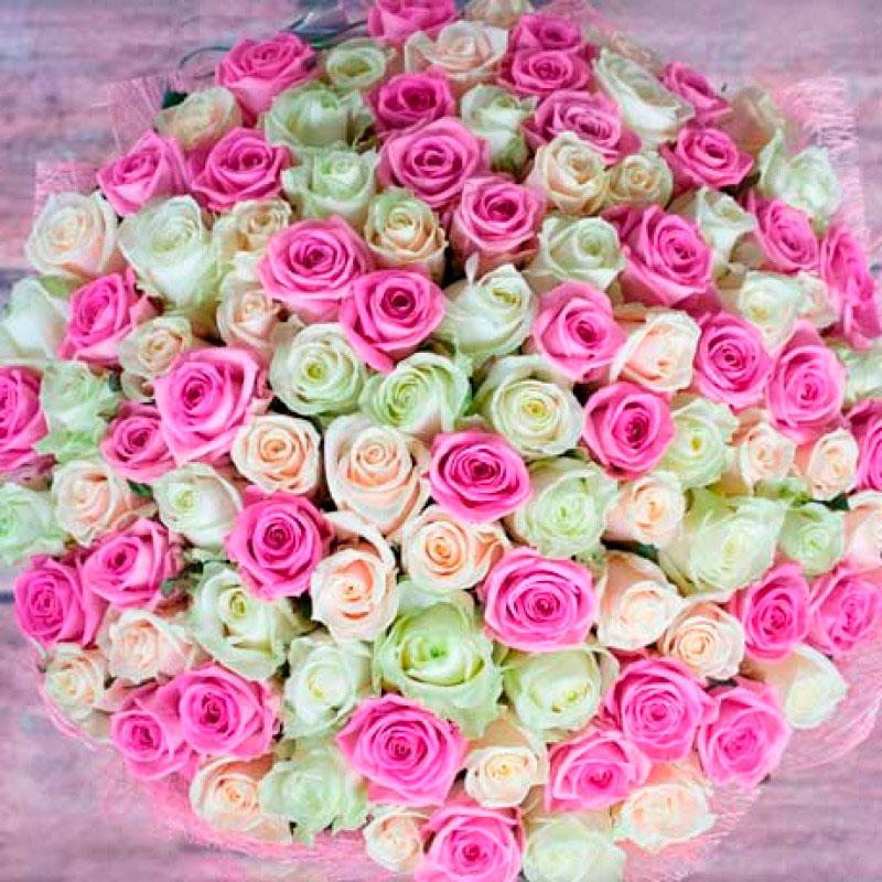 Букет из 101 розы «Нежный»
