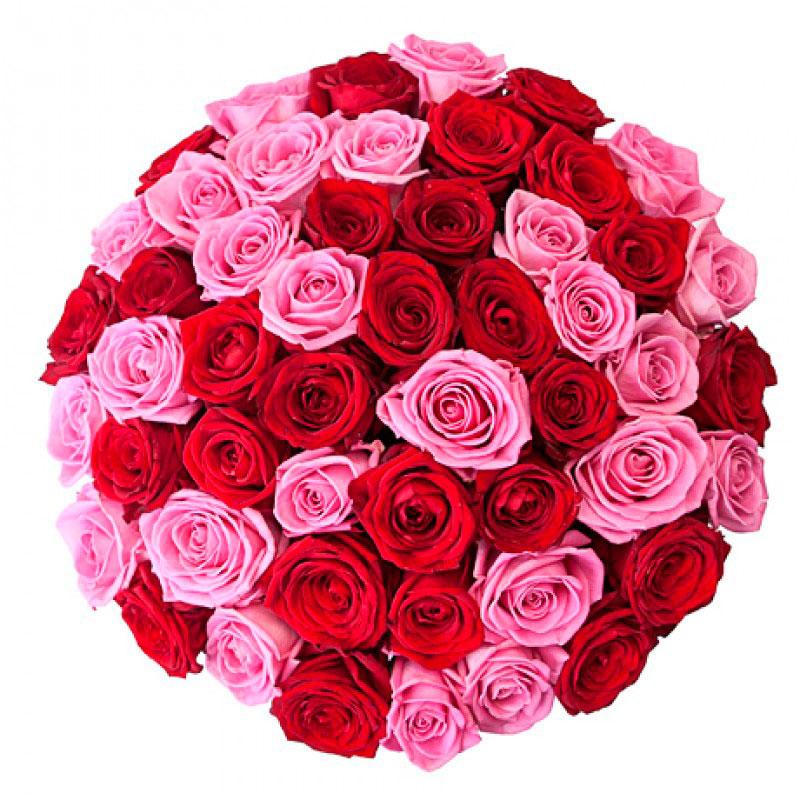 Букет из 51 розы «Малиновый щербет»