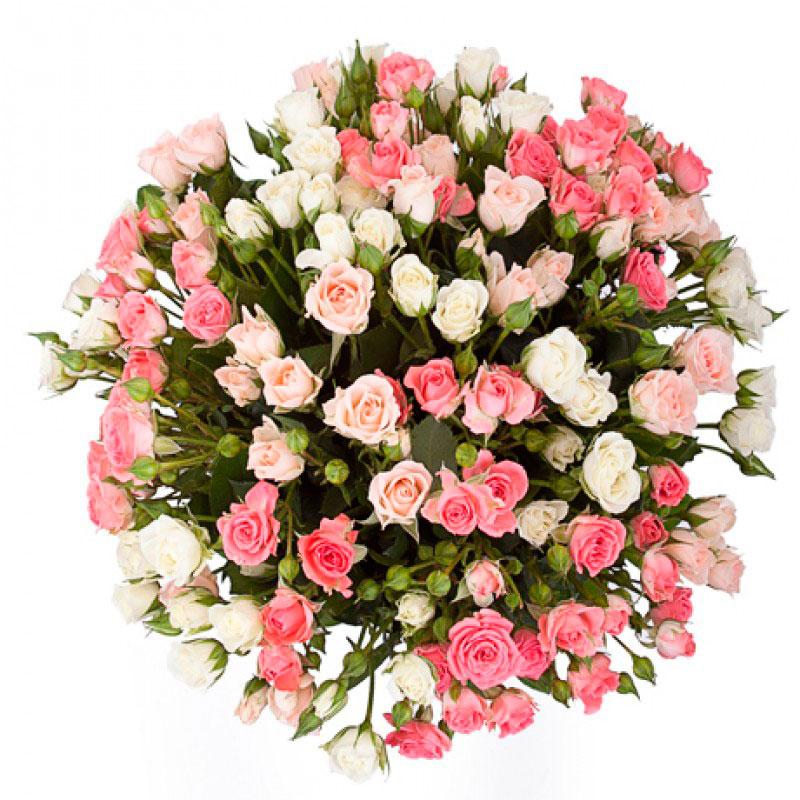 Букет «Розовый дайкири» 31 кустовая роза