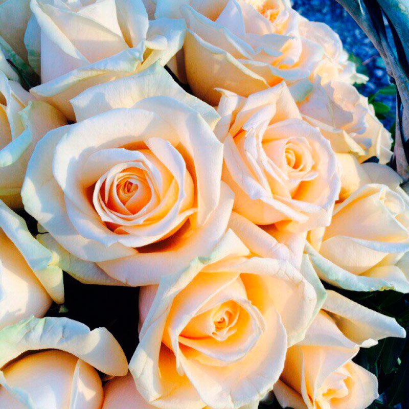 "Корзина ""Нежность"" из 35 роз"